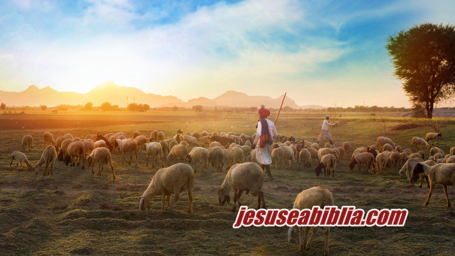 Jesus o Bom Pastor e as 7 BÊNÇÃOS do Cuidado de Deus