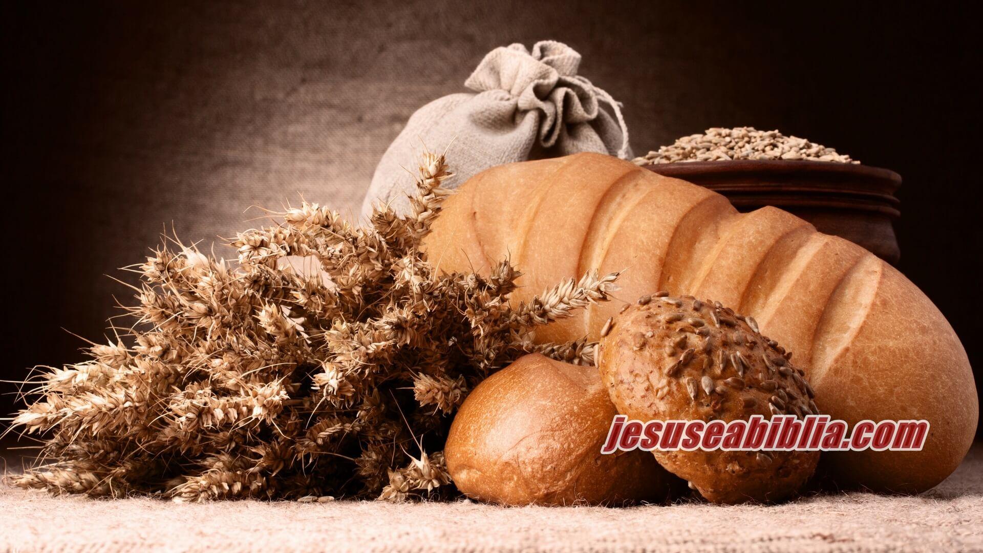 Eu Sou o Pão da Vida - Jesus e a Bíblia