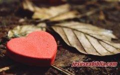 33 Versículos Bíblicos de Amor Sobre: Casamento, o Próximo e Deus