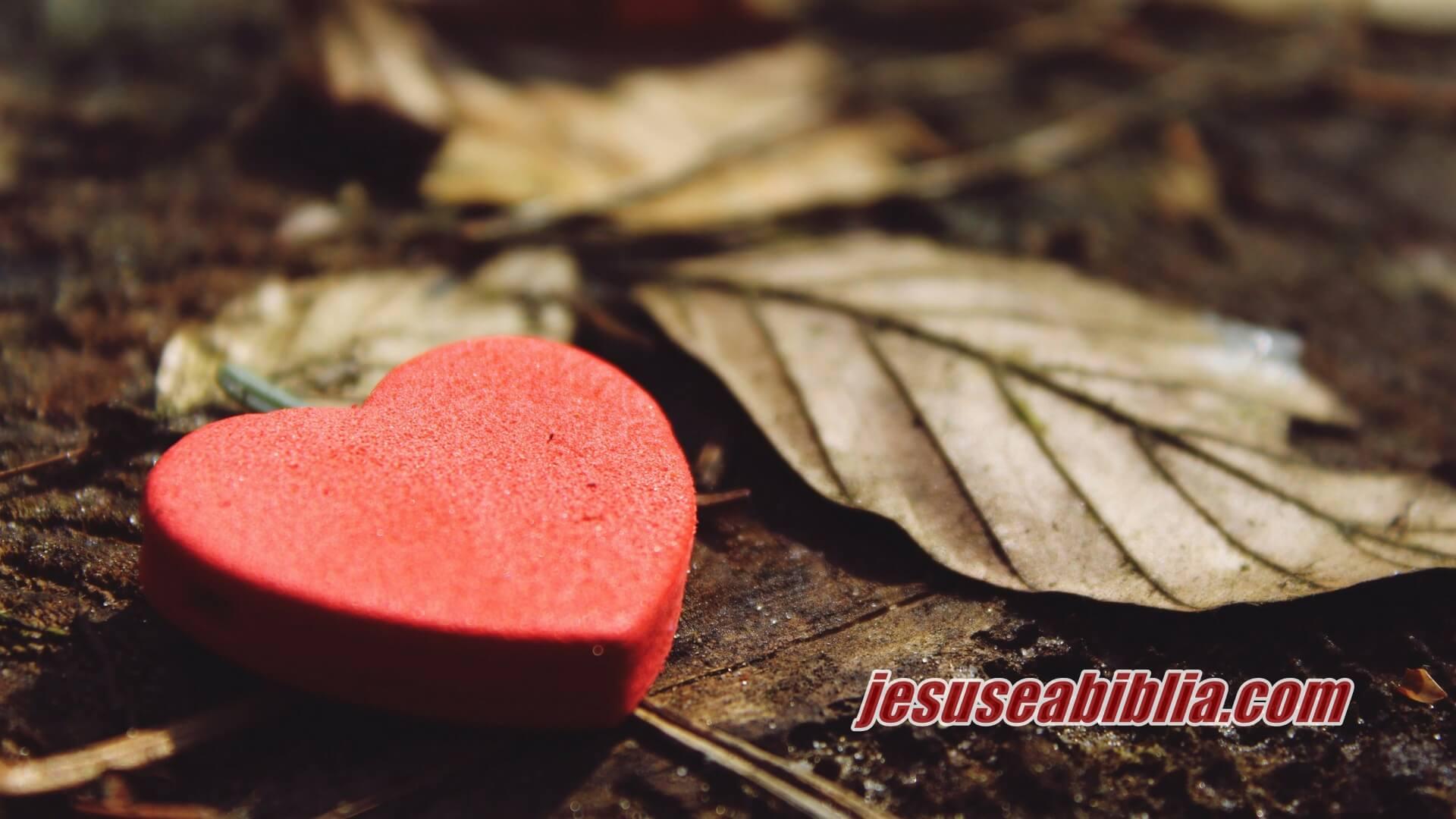 Versículos Bíblicos de Amor - Jesus e a Bíblia