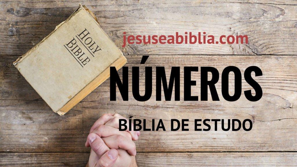 Números - Bíblia de Estudo Online