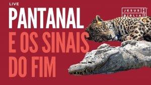 Pantanal em Chamas e os Sinais do Fim (5)